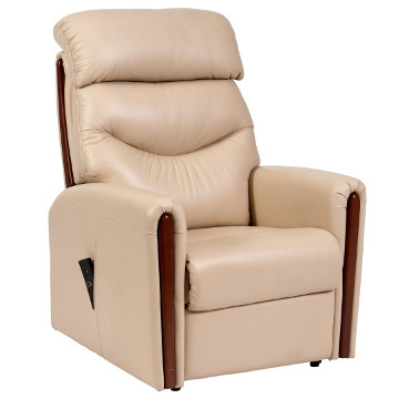 Santana Leather Electric Rising Recliner Chair with Dual Motor